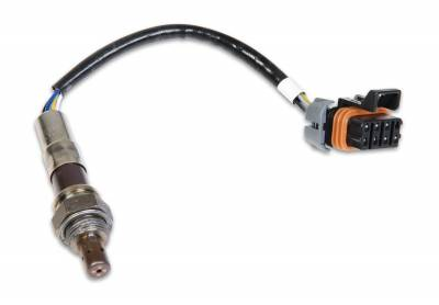 Holley EFI - Holley EFI 554-100 Wideband Oxygen Sensor