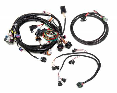 Holley EFI - Holley EFI 558-500 Fuel Injection Wire Harness - Image 1